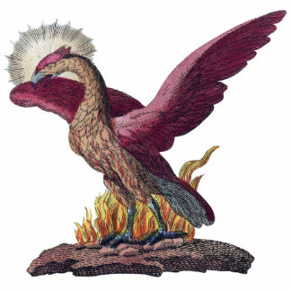 Imán de la escultura de la foto de Phoenix Escultura Fotografica