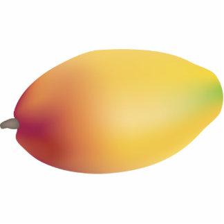 Imán de la escultura de la foto del mango imán fotoescultura