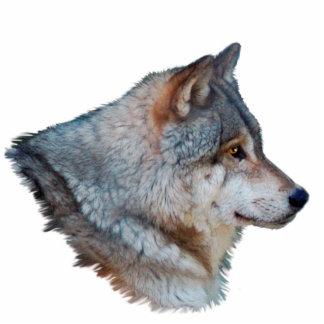 Imán de la fauna de la CABEZA del LOBO GRIS (escul Imán Fotoescultura