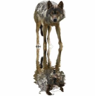 Imán de la fauna del LOBO GRIS (esculpido) Imán Fotoescultura