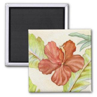 Imán de la flor del hibisco