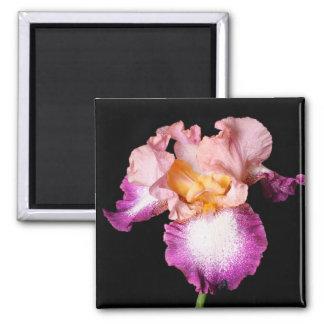 Imán de la flor del iris