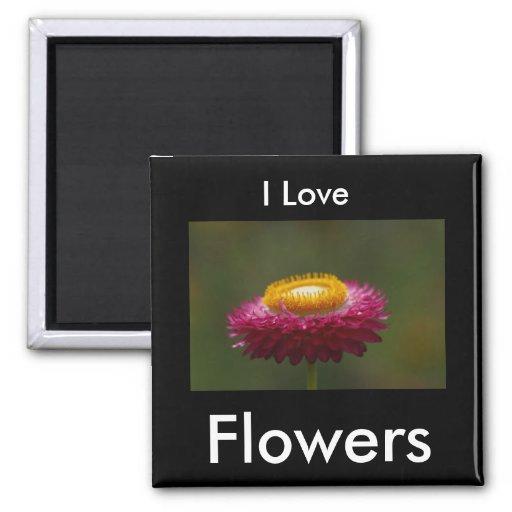 Imán de la flor eterna