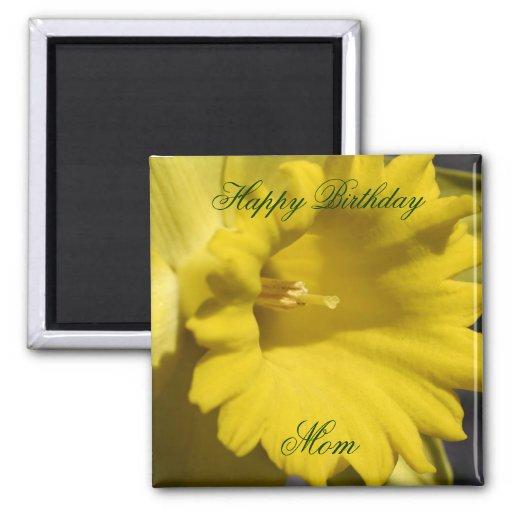 Imán de la foto de la flor del narciso de la mamá
