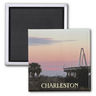 Imán de la foto del recuerdo de Charleston