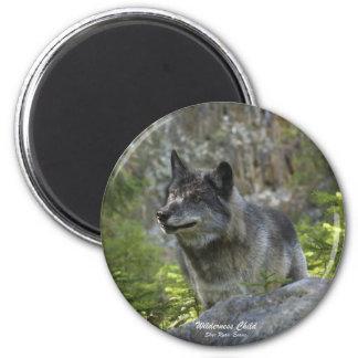 Imán de la fotografía de la fauna del lobo gris