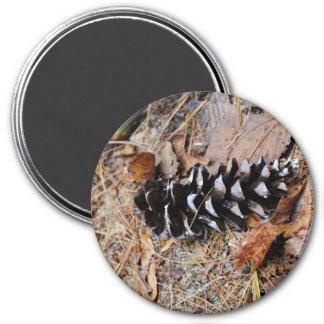 Imán de la fotografía del cono del pino