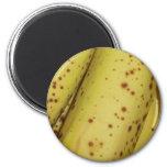 Imán de la fruta del plátano