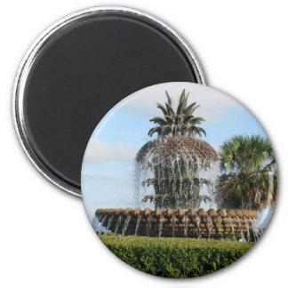 Imán de la fuente de la piña del SC de Charleston