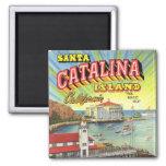 Imán de la isla de Catalina