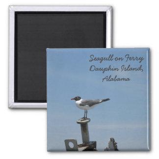 Imán de la isla del delfín, Alabama