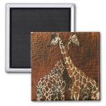 Imán de la jirafa