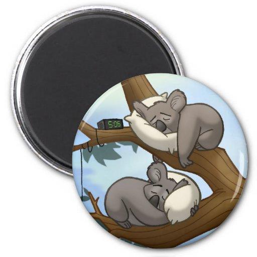 Imán de la koala el dormir