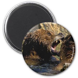 Imán de la lucha del oso