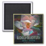 Imán de la magnolia meridional