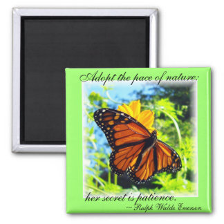 Imán de la mariposa de monarca