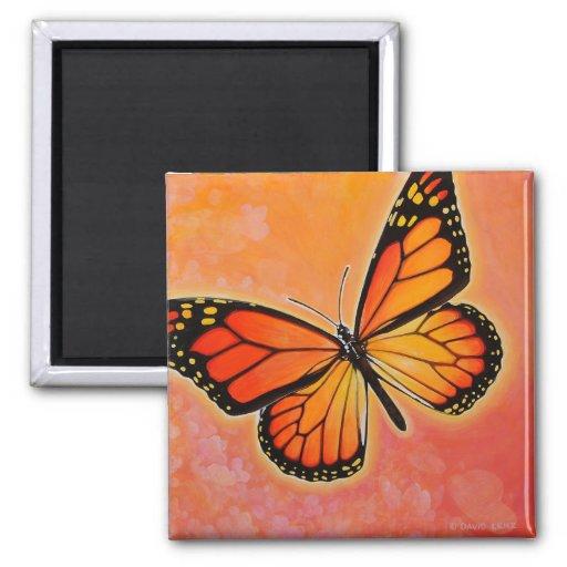 Imán de la mariposa de monarca que agita