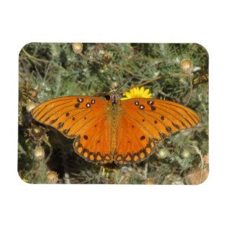 Imán de la mariposa del Fritillary del golfo