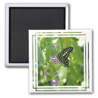 Imán de la mariposa del jardín