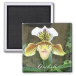 Imán de la orquídea