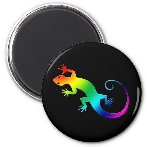 Imán de la oscuridad del Gecko del arco iris