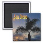 Imán de la palmera de San Diego