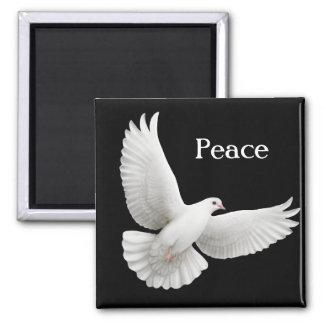 Imán de la paloma de la paz