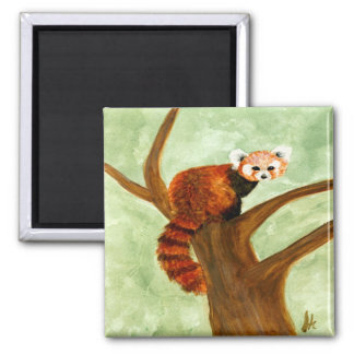 Imán de la panda roja