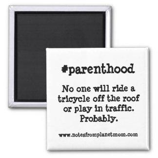 Imán de la paternidad