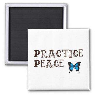 Imán de la paz de la práctica