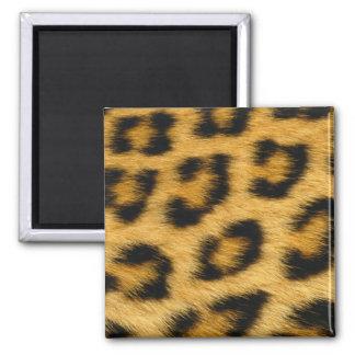 Imán de la piel del leopardo
