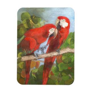Imán de la pintura de la fauna