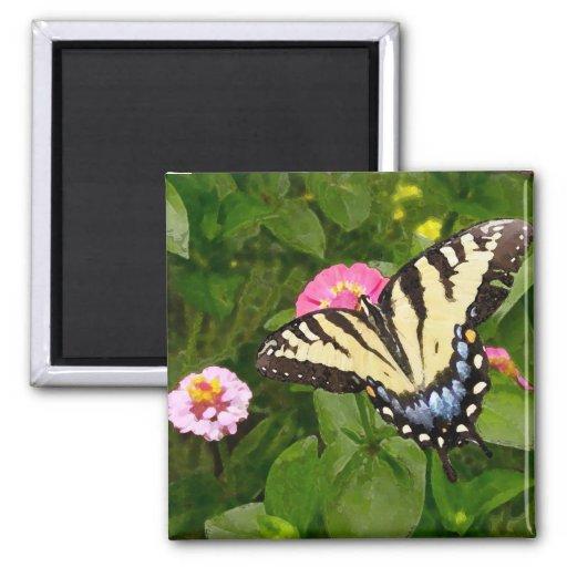 Imán de la pintura de la mariposa