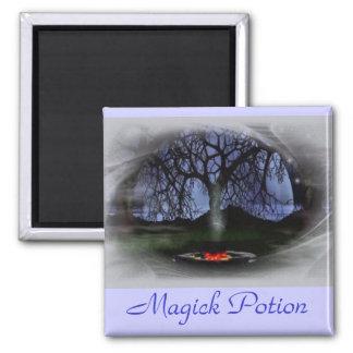 Imán de la poción de Magick