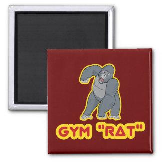 Imán de la rata del gimnasio