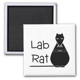 Imán de la rata del laboratorio