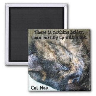 Imán de la siesta del gato