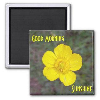 Imán de la sol de la buena mañana