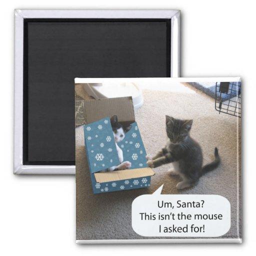 Imán de la sorpresa del navidad del gatito
