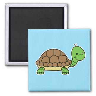 Imán de la tortuga