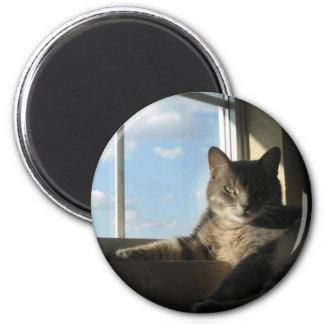 imán de la ventana de Stella