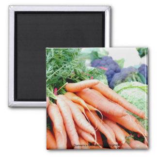Imán de la zanahoria