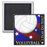 Imán de las estrellas y de las rayas del voleibol