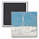 Imán de las turbinas de viento del invierno