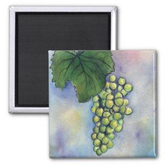 Imán de las uvas de vino de Chardonnay