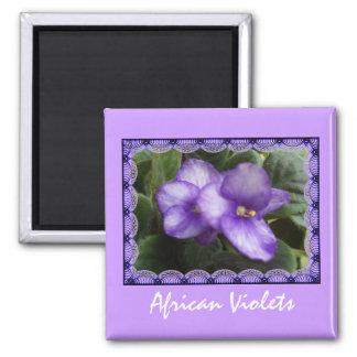 Imán de las violetas africanas