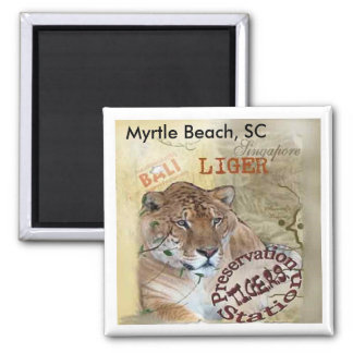 Imán de Liger - Myrtle Beach, SC