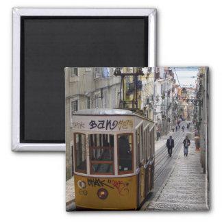 Imán de Lisboa