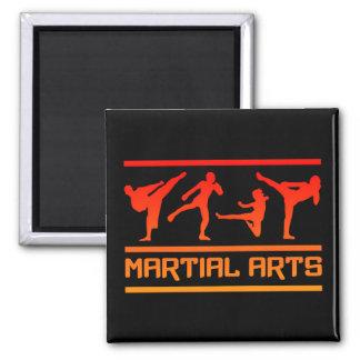 Imán de los artes marciales