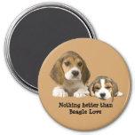 Imán de los compinches del beagle